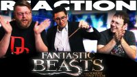 Fantastic-Beasts-and-Where-to-Find-Them-Trailer-REACTION